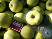 Плодоносящий яблоневый сад в Крыму 4, 8 Га (Свидетельство,  документы го